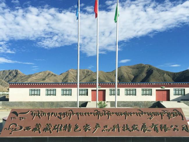 西藏藏雄桶装饮用水生产线项目